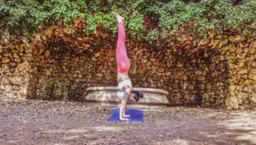 Ashtanga Path & the Eight Limbs of Yoga